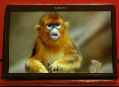 News video: Samsung Tablets to Have Richer Colors in Screens